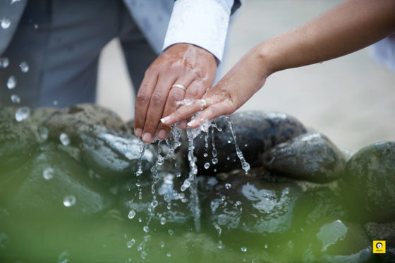 wedding_ZEN_052