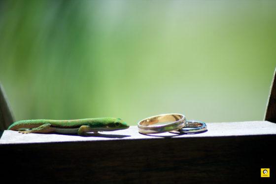 wedding_ZEN_037